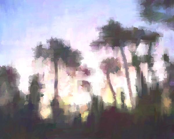 Skyglow Trees