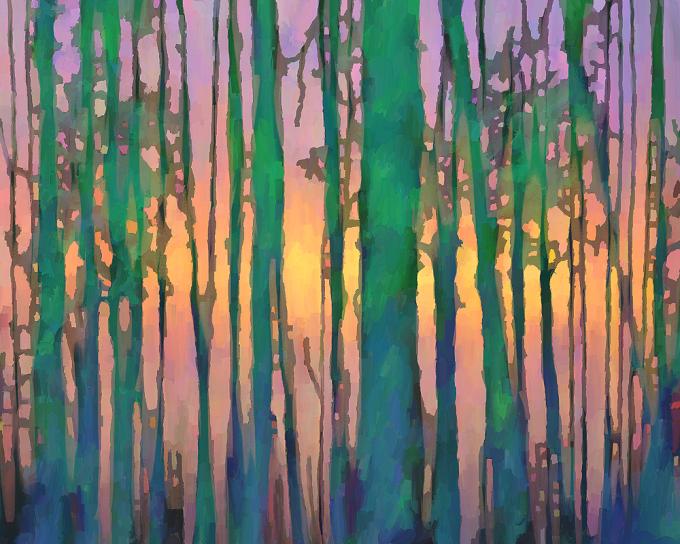 Skyfire Trees